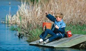 пруд для платной рыбалки